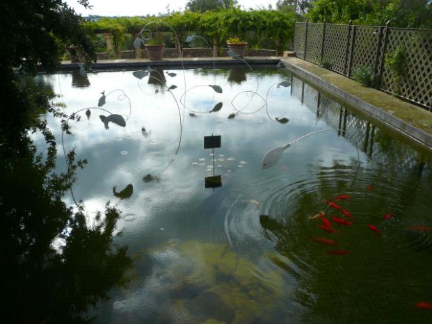 installation bassin apothèque expositionjardin poissons porcelaine daurades